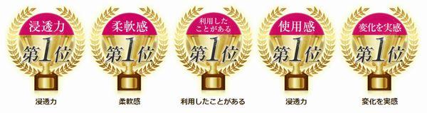 リプロスキン ニキビ・ニキビあとケア化粧品部門5冠獲得
